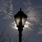 Lamp Post in Riverside Park, NYC by Henri Irizarri