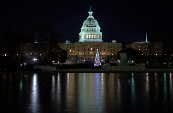 U.S. Capitol Building at Night by Terence Russell