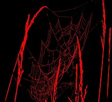 Spider Webs In Red by mark4321