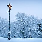 Malvern Lamppost by Rachel Lilly
