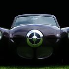 Bullet nose by Darrell-photos