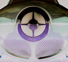Bullet nose 3 by Darrell-photos