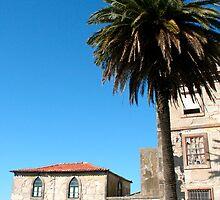 Old Porto by zumi