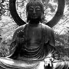 Black and White Buddha by Darrell-photos