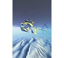 Bulldog Squadron Flyover Photographic Print