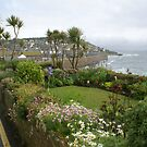 Fishermen&#x27;s cottage gardens, Mousehole Cornwall UK by BronReid