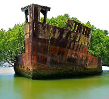 SS Ayrfield Mariner's Cove Homebush Bay Shipwreck by DavidIori