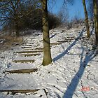 SNOW 2010 by 117annie