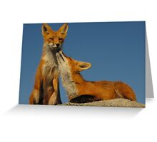 Sentient Vixens Greeting Card