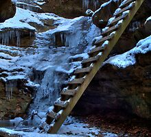 Bear Hollow - Ladders by Jeff VanDyke