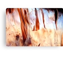 Fire Falls Canvas Print