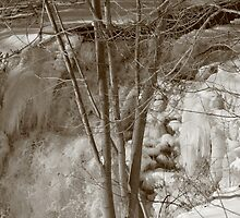 Winter is Here by Lynn  Gibbons