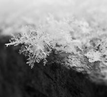 Flakes on a Rock by LeeAnne Emrick