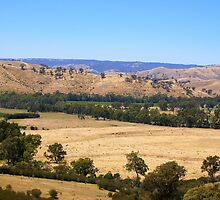 Farmland nestled at the base of the hills near Alexandra, Victoria by elizabethdonogh