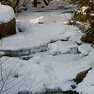 New Hampshire Winter Stream by Monica M. Scanlan