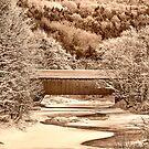 Bridge In Sepia by Deborah  Benoit