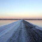 Follow The Salt Track by Gary Cummins