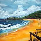 Springs Beach and the Weatherman by robert (bob) gammage