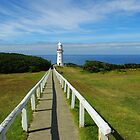 Path to the Lighthouse by Kerry  Hill
