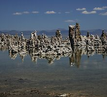 Mono Lake in July by Rob  Holcomb