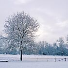 Snowy landscape - Christchurch Meadows, Oxford by Zoe Power