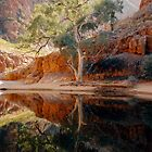 Ormiston Gorge by Cheryl Parkes
