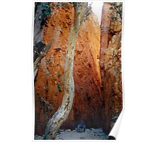 Standley Chasm Poster