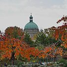 Parliament Building Victoria BC in Autumn by AnnDixon