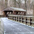 Wooden Footbridge in Wildwood Preserve Metropark, Toledo by Terence Russell