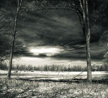 Storm Clouds At The Kitty Todd Nature Preserve  by Mitch Labuda