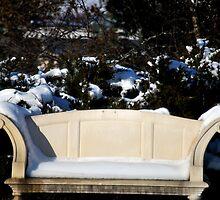 A Cold Seat by Michelle BarlondSmith