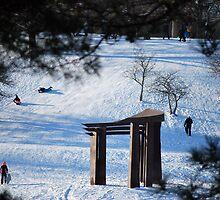 A Fine Winters Day  by Michelle BarlondSmith