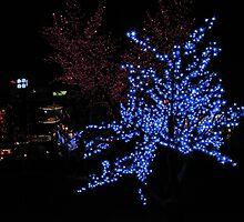 China, 2010, Nanjing, Tree Lights by DaveLambert