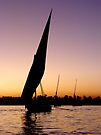 Sunset felucca by Paige