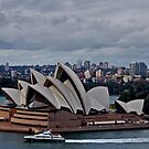 Sydney Harbour On A Late Autumn's Afternoon by Joanna Beilby