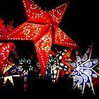Starry Starry Night by Nico Kenderessy