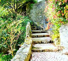 welcome to paradise 121..sintra portugal.. by Almeida Coval