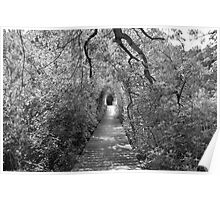 black and white wellfleet path  Poster