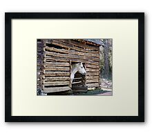 Hand hewn log barn of the 1800's! Framed Print