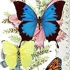 Butterflies in Flight Thinking-of-you Greeting Card by dorcas13