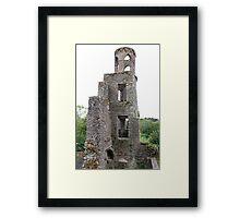 Blarney Castle Tower Framed Print