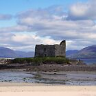 Ballinskelligs Castle -  Ballinskelligs, Kerry, Ireland. by CFoley