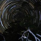 Star Trails at Flinders Chase by Wayne England