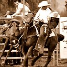 Upper Horton Rodeo 2010 by wildfillies