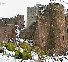 Goodrich Castles Series #4 by missmoneypenny