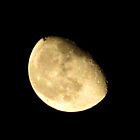 Sinking moon by LeeHicksPhotos