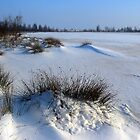 Fresh Snowdunes by ienemien