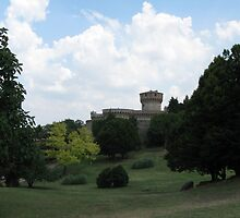 Volterra's Medican Fortress by BlackFeather