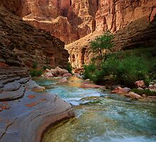 Havasu Creek by Inge Johnsson