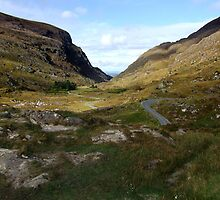 Road through the Gap of Dunloe, Killarney, Kerry, Ireland by CFoley